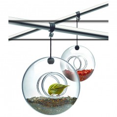 Eva Solo Hanging Ball Shaped Glass Bird Feeder