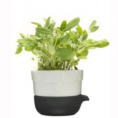 Sagaform Green double-barelled growing pot
