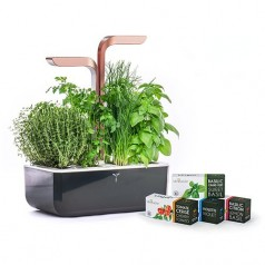 Veritable SMART COPPER Indoor Garden