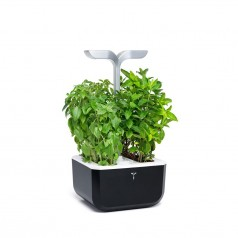 Veritable SMART EXKY Indoor Garden