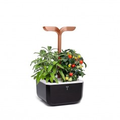 Veritable SMART COPPER EXKY Indoor Garden