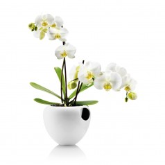 Eva Solo Orchid pot - white